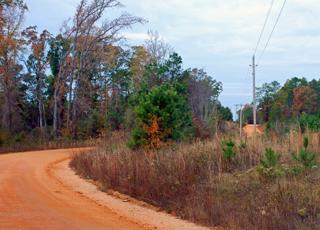county-road-2-copyright-jje3.jpg
