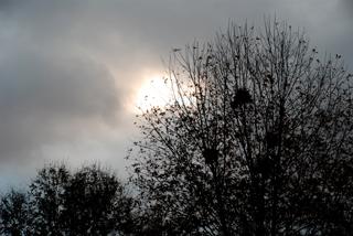 sunrise-looking-east-12162007.jpg
