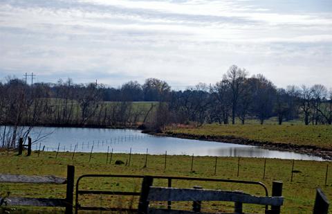 Hayneville, Alabama cattleranch